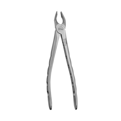 35 Apical Forceps, Upper Canines and Premolars, Atraumair